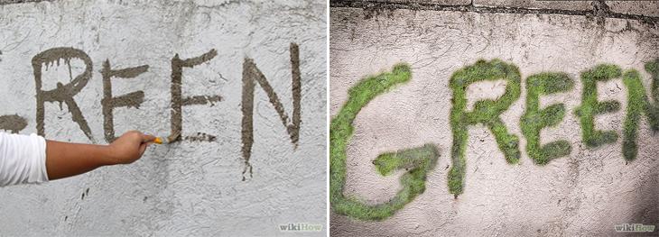 moss_graffiti_4