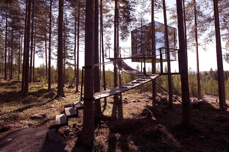 Las casas de árbol más soñadas